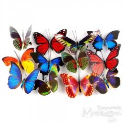 Motyl ze spinaczem