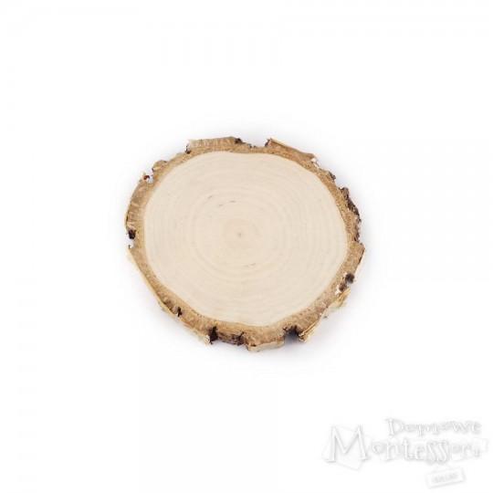 Plaster brzozowy 9-10 cm