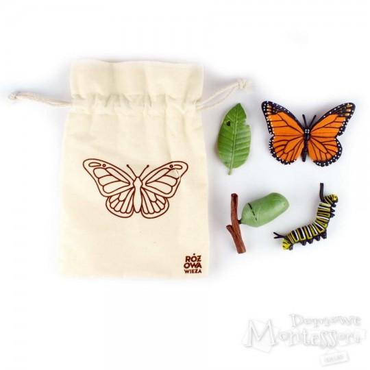 Figurki cykl życia motyla w woreczku