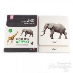 Karty - zwierzęta Afryki