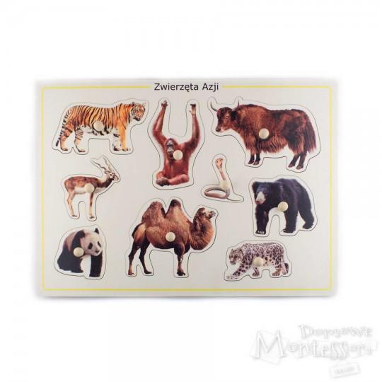 Układanka zwierzęta Azji