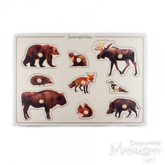 Układanka zwierzęta lasu