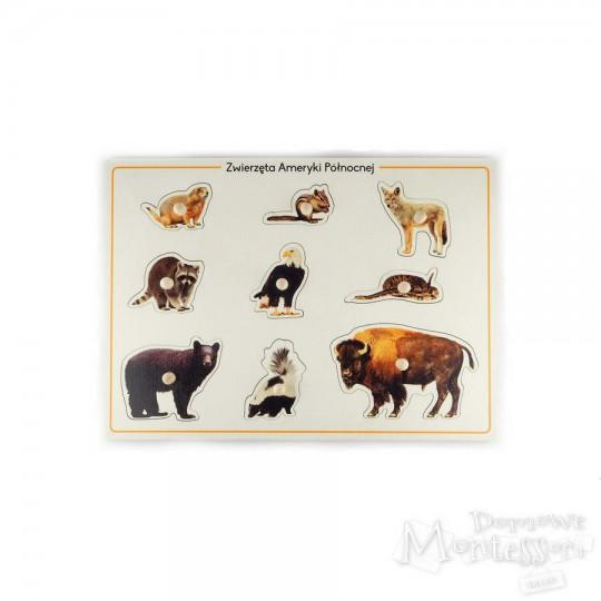 Układanka zwierzęta Ameryki Północnej