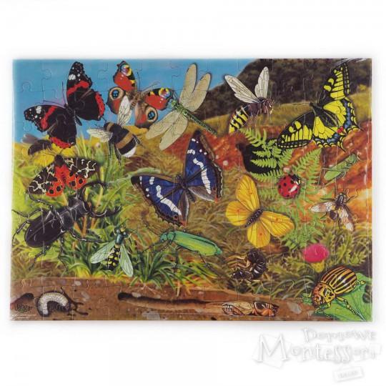 Puzzle edukacyjne: owady na łące