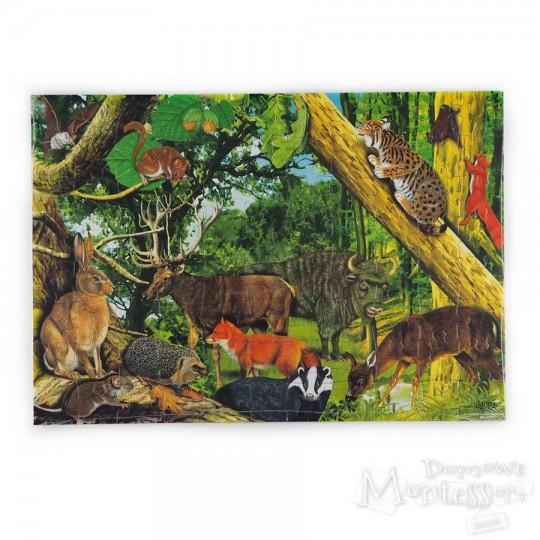 Puzzle edukacyjne: leśne ssaki