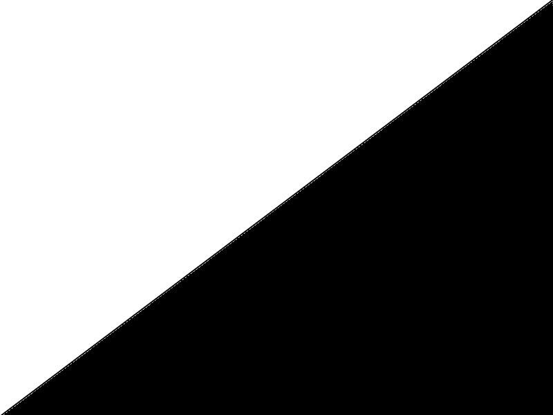 Biało-czarny